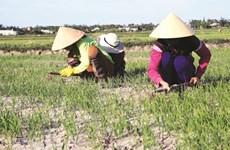 Le delta du Mékong à l'épreuve du changement climatique