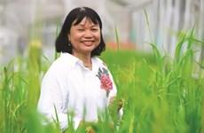 Une scientifique porteuse d'espoir de faire pousser le riz dans l'eau salée