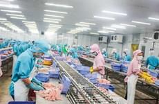 L'UE, marché prometteur pour les pangasius du Vietnam