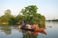 Safari sur l'île aux aigrettes de Chi Lang Nam à Hai Duong