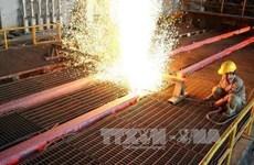 Hoa Phat et Kyoei Steel coopèrent sur le long terme
