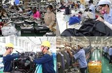 Le VEPR prévoit une croissance vietnamienne de 7,05 % en 2019