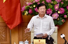 Le Vietnam avance quatre groupes de solutions à la pêche INN