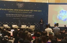 Ouverture de Vietnam Business Summit 2019 à Hanoï