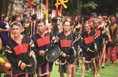 À la rencontre des gardiens de l'âme des gongs du Tây Nguyên