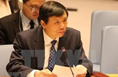 À l'ONU, le Vietnam s'engage pour les droits de l'homme