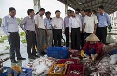 Le Vietnam récolte ses fruits dans la lutte contre la pêche INN