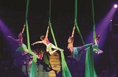 Festival international du cirque 2019: De nouveaux talents vietnamiens sous le chapiteau