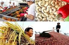 L'agriculture en quête d'une stratégie de compétitivité