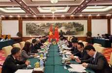 Vietnam-Chine : négociations gouvernementales sur les questions frontalières et territoriales