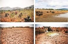 Le réchauffement climatique menace l'agriculture du Tây Nguyên