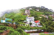 Randonnée en altitude à Tam Dao, dans le Nord