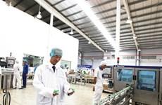 Le Vietnam investit plus de 458 millions de dollars à l'étranger en 11 mois