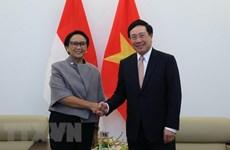 Le Vietnam et l'Indonésie renforcent leur coopération multiforme