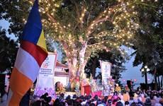 À l'ombre de l'arbre de la Bodhi offert par le président indien Rajendra Prasad