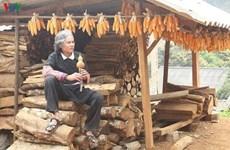 Mui Hai et les mélodies montagnardes