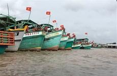 Pêche INN : La CE note des progrès et poursuivra son examen