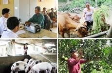 Les 10 événements marquants du secteur du travail, des invalides et des affaires sociales
