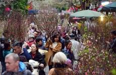 Têt traditionnel: les localités mettent les bouchées doubles