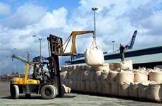 Exportation de 34 millions de tonnes de ciment et de clinker en 2019