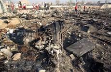 Accident d'avion d'Ukraine Airlines : le Vietnam exprime ses condoléances