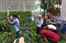 HCM-V: forte croissance de la valeur de production agricole en 2019