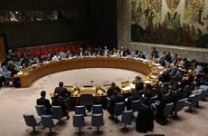 Le Vietnam préside la session du CSNU sur le Yémen et la Colombie