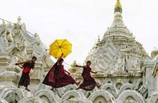 Plusieurs Vietnamiens primés à un concours de photos en Inde