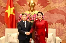 Le Vietnam et le Laos intensifient leur coopération législative en 2020