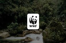 Le WWF appelle à mettre fin au commerce d'espèces sauvages