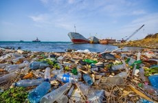 Khanh Hoa réduira de moitié ses déchets plastiques marins d'ici 2025