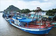 Kiên Giang s'efforce d'empêcher les activités de pêche illicite