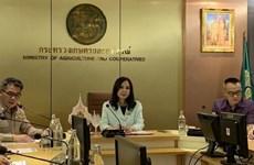 Thaïlande: les exportations de fruits vers la Chine plombées par le COVID-19