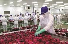 Le secteur agricole, l'un des grands gagnants de l'EVFTA