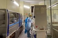 COVID-19 : le bilan des contaminations passe à 113