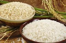 Les exportations nationales de riz se portent bien