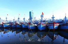 Binh Dinh et Ninh Thuân s'emploient à lutter contre la pêche INN
