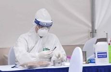 Coronavirus : le Vietnam signale un seul nouveau cas, le bilan passe à 240