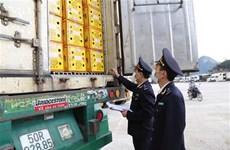 Vietnam - Chine : les échanges commerciaux de retour à la normale