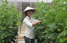 Un jeune couple fait fortune grâce à l'agriculture high-tech
