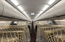 Le plan d'exploiter des liaisons domestiques pour des compagnies aériennes