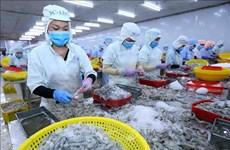 Les exportations de crevettes vers les États-Unis en hausse de 18,2% au 1er trimestre