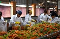 Vietnam: l'agriculture enregistre un excédent commercial malgré le coronavirus