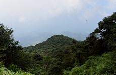 Parc national de Phia Oắc - Phia Ðén: un des hauts lieux du tourisme de Cao Bang