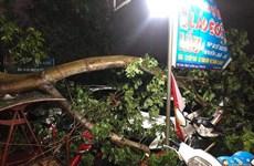 Des pluies torrentielles font un mort et 12 blessés dans les provinces du Nord