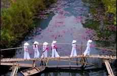 Un photographe vietnamien primé au concours #Spring2020