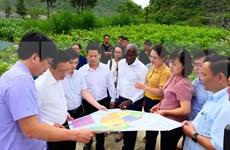 BM : recommandations de politiques au Vietnam pour maintenir une croissance de qualité