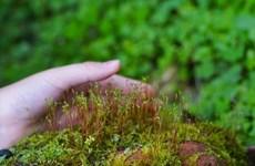 Biodiversité : agir pour les générations futures