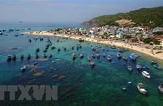 Journée mondiale de l'océan : Innovation pour un océan durable