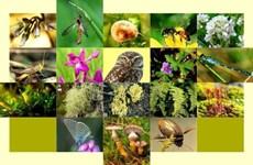 Le Vietnam face au défi du déclin de la biodiversité